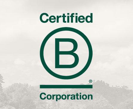 Certified B Corp logo
